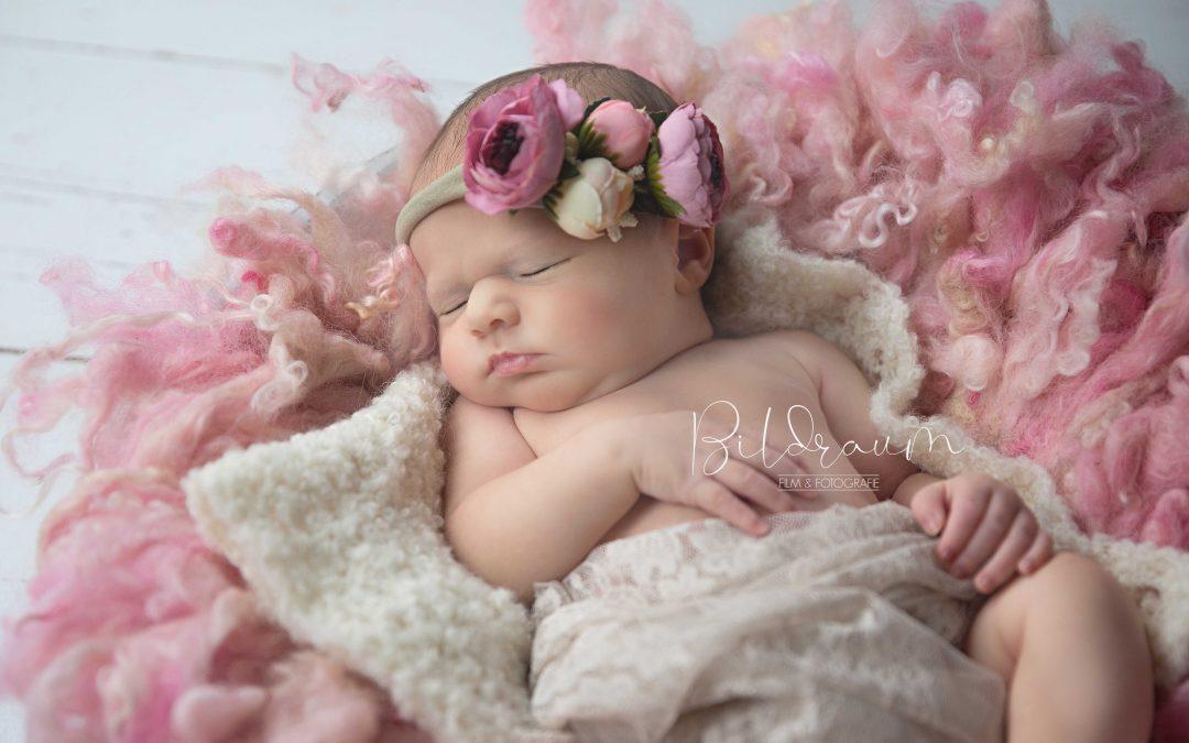 Neugeborenes im Nestchen